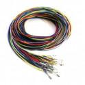 EMU Black wiring harness