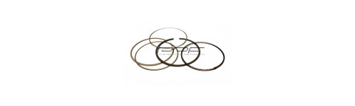 DP/CP Piston rings and pins
